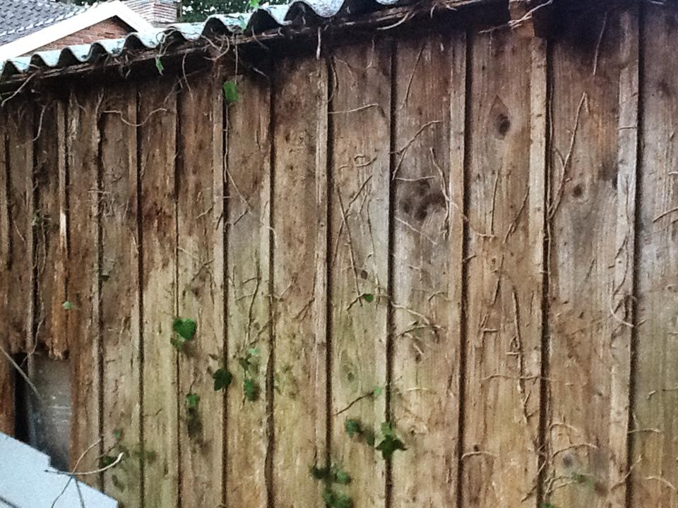 Trädgårdsförråd - före